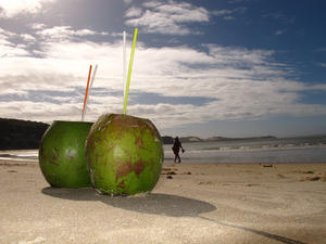Tender Coconut Water A Super Drink For Weight Loss And Much More